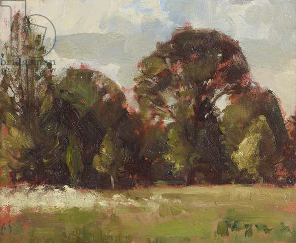 The Gardens at Anglesey Abbey: Grass, Spring Flowers and Trees (oil on panel)