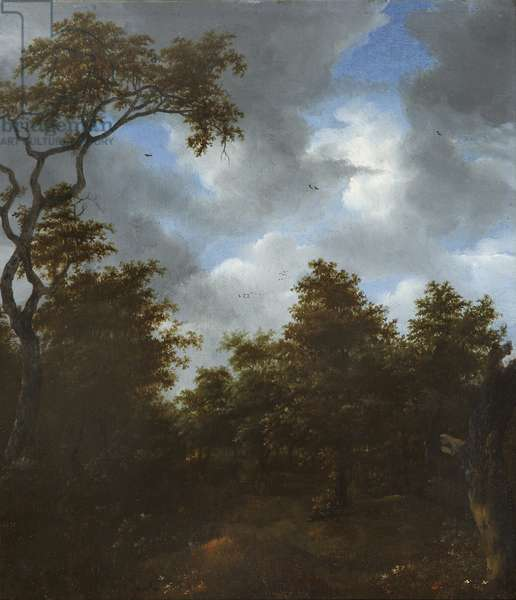 Sportsmen in a Wood in the Dunes, 1647 (oil on panel)