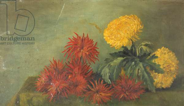 Still Life, Chrysanthemums (oil on canvas)