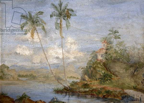 Tropical landscape (oil on panel)