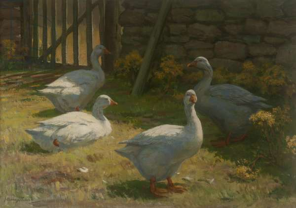 Geese in a Farmyard (oil on canvas)