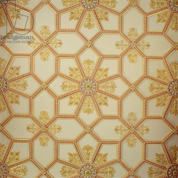 The Drawing Room ceiling (photo)