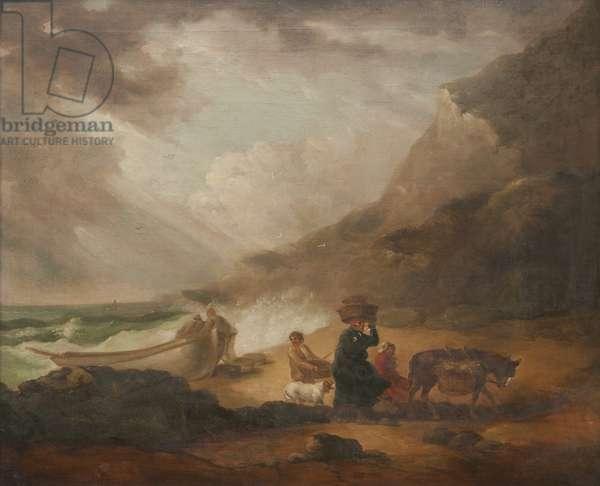 A Stormy Seashore Scene
