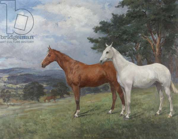 Two Horses in a Landscape: a Chestnut and a Grey Hunter, 1922 (oil on canvas)