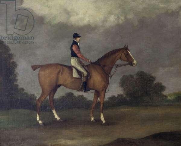 'Elis', a Chestnut Horse, ridden by J. Day