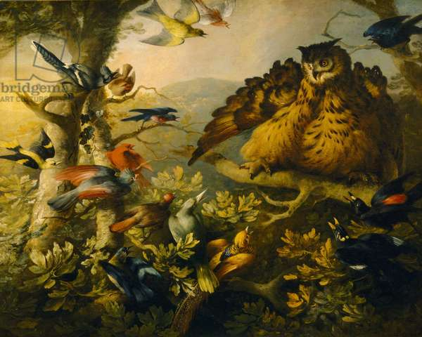 The Mobbing of a Long-eared Owl by other Birds (oil on canvas)