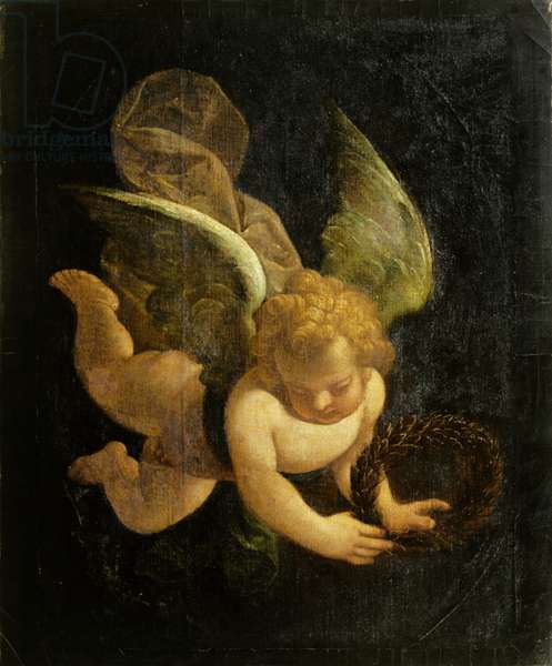 Putto (oil on panel)
