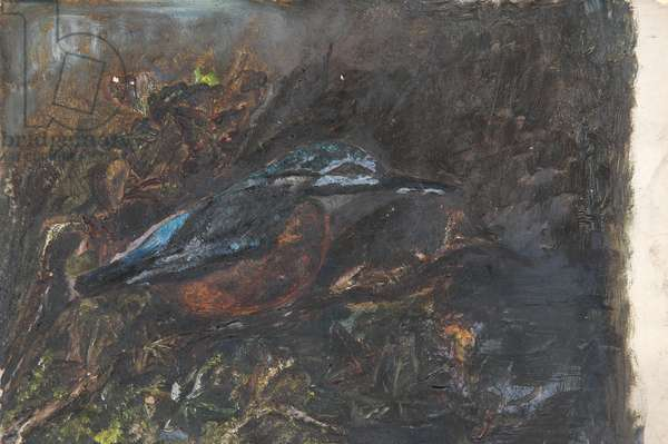 Bird (Kingfisher) (from a portfolio of oil sketches), c.1913 (oil on millboard)