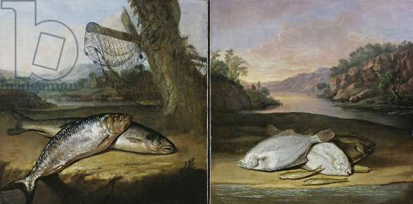 Two fish paintings (oil on canvas) (see also 361538)