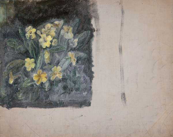 Primroses (from a Portfolio of oil sketches), c.1913 (oil on millboard)