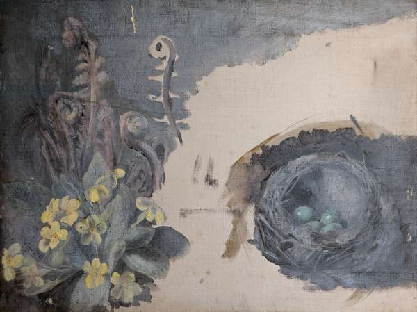 Still Life of Primroses and Bird's Nest (oil on canvas)