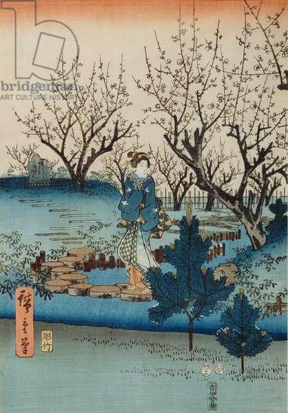 Plum Blossom (woodblock print)