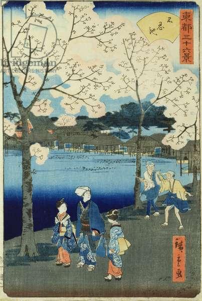 Cherry Blossom (woodblock print)