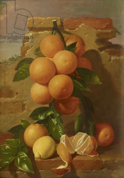 Still Life with Oranges in a Landscape