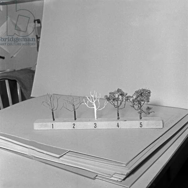 Five steps of modeling a tree for your model train, Germany 1950s