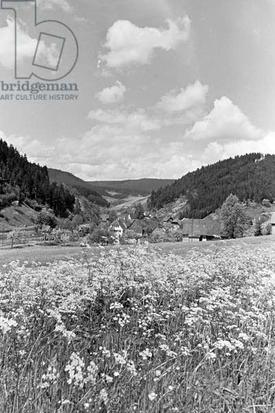 Idyllic panoramic view of the Black Forest near Alpirsbach, Germany 1930s (b/w photo)