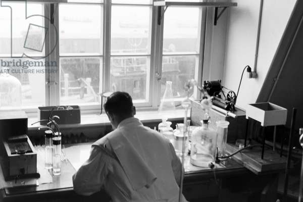 Scientific research in the German Bight, Germany 1930s (b/w photo)