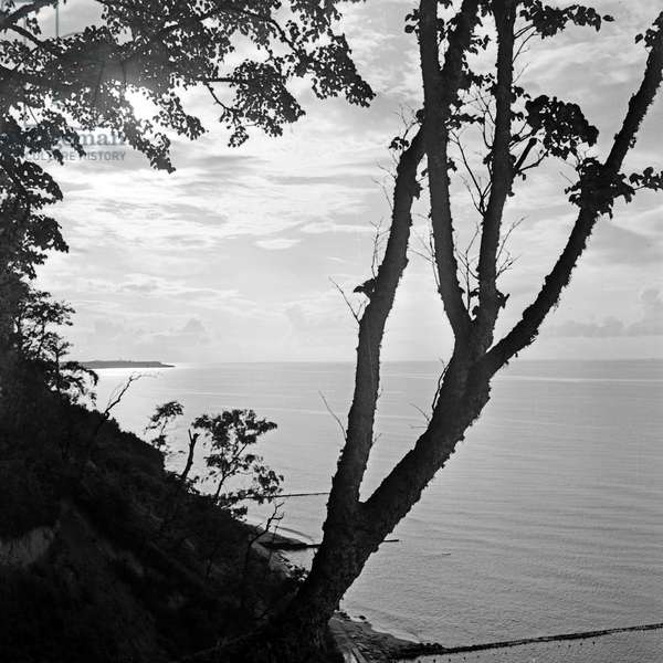 The coast of the Baltic Sea at Sambia, a landscape in East Prussia, Germany 1930s (b/w photo)