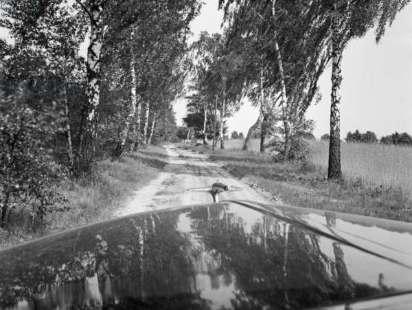 Impression from the German landscape, Germamy 1930s (b/w photo)