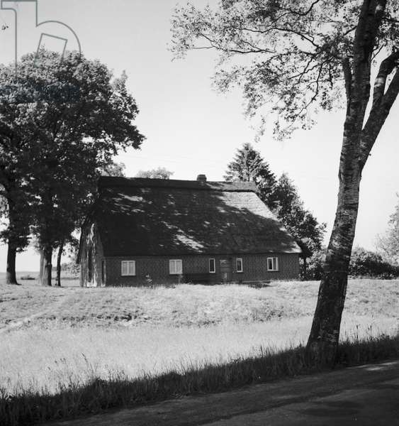 Lonesome house at the moor near Bremen, Germany 1930s (b/w photo)
