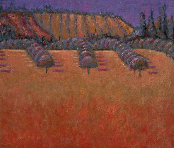 Lavangeiras, 1999 (oil on linen)