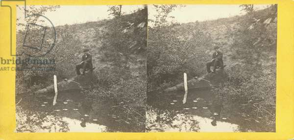 View on Willoughby's Run, bewteen Lithia Springs and the spot where General Reynolds fell, west of Theological Seminary. Rebel Position, no. 562 from 'Tyson's Stereoscopic Views of The Battle-field of Gettysburg' (albumen print)