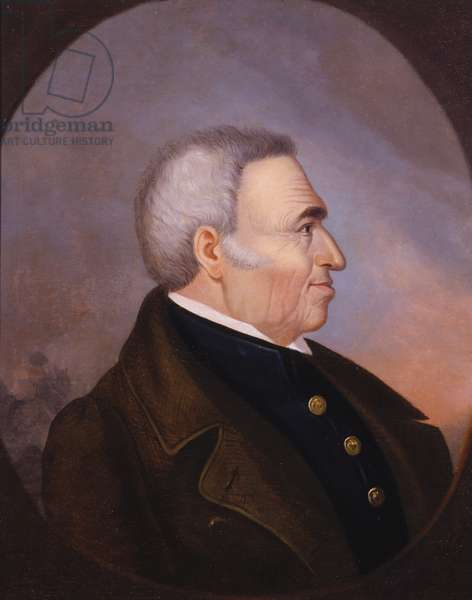 Portrait of Zachary Taylor (oil on canvas)