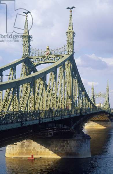 Liberty Bridge (photo)