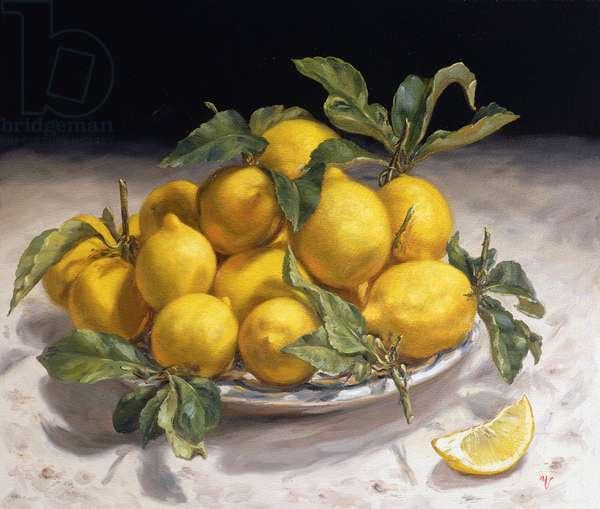 Lemons II (oil on paper)