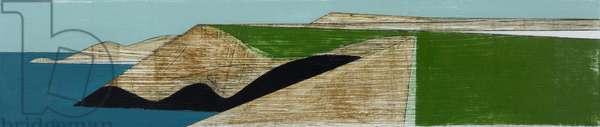 Field Edge 27 2015 acrylic on plywood 26 x 55 cm