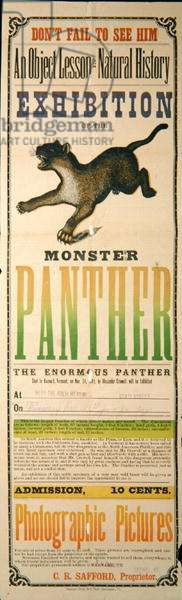 Advert for the exhibtion of the Monster Panther, 1882 (colour litho)
