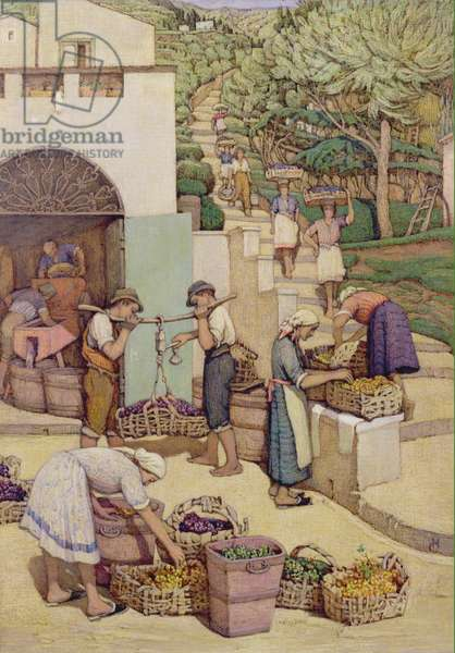 Bringing down Mountain Grapes (tempera on board)