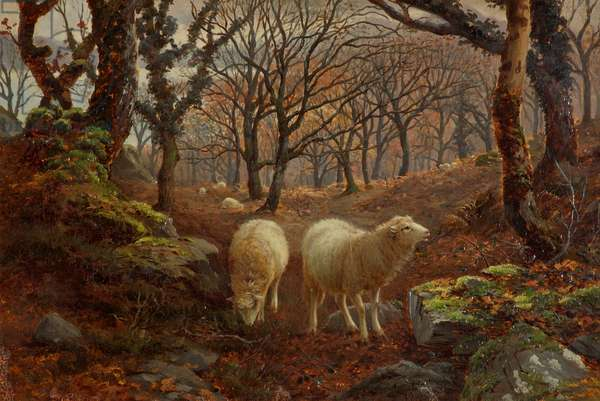 Sheep on a Wooded Hillside, c.1891 (oil on canvas)