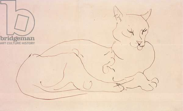 The Cat (pen and ink on paper)