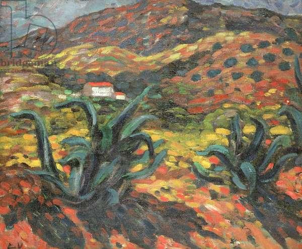 The Agaves, 1896 (oil on canvas)