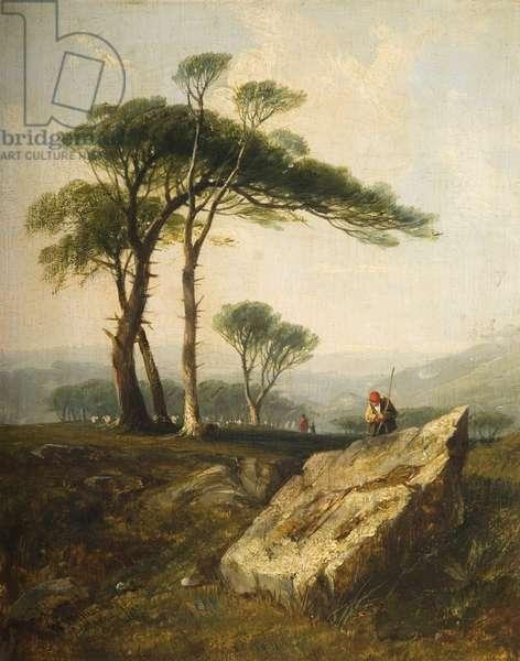 Clarenton Downs, 1844 (panel)