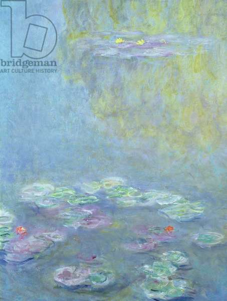 Waterlilies, 1906 (oil on canvas) (detail of 242510)