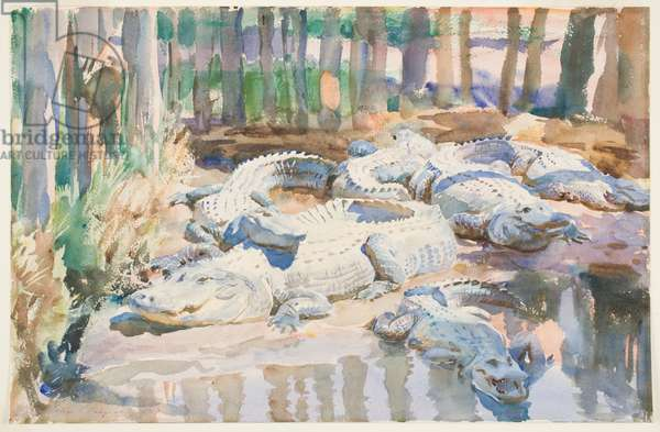 Muddy Alligators, 1917 (w/c over graphite on paper)