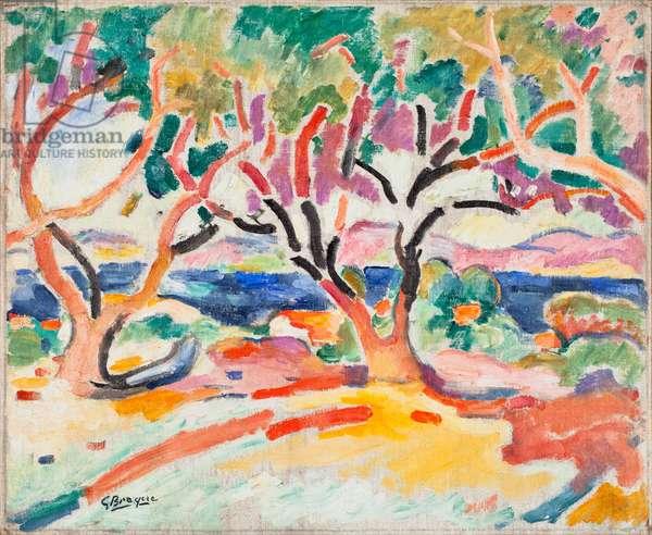 Olive Trees (oil on canvas)