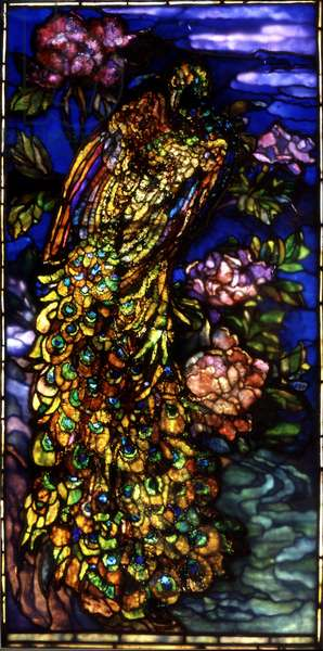 Peacock Window, 1892-1908 (stained glass)