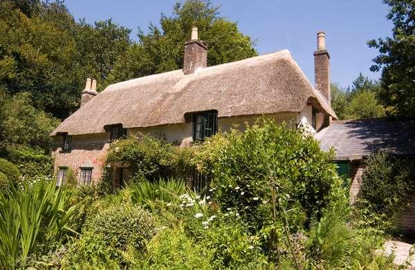 Thomas Hardy 's birthplace