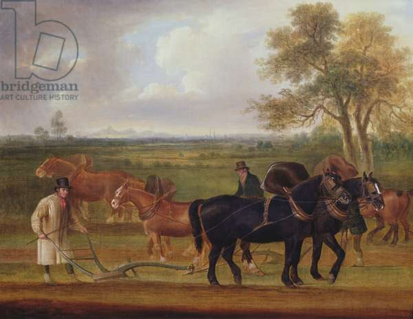 The Ploughing Match, 1813 (oil on canvas)