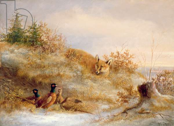 Fox and Pheasants in Winter (oil)