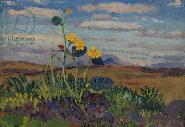 Ranunculus, 1909-12 (oil on canvas)