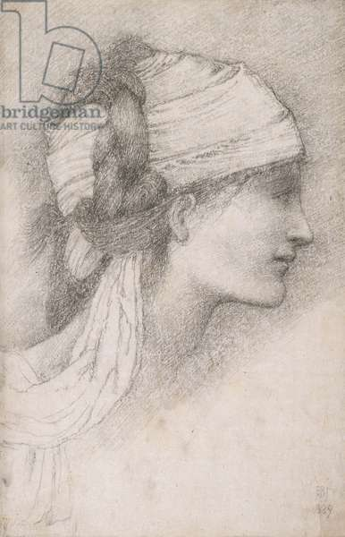 Study of a female head, to right, 1889 (charcoal on paper)