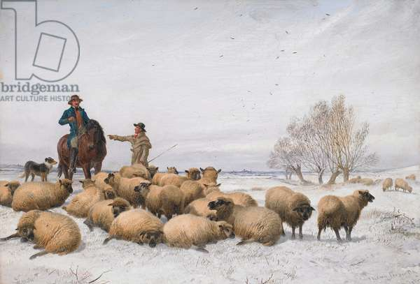 Snow and Sheep, 1884 (oil on board)