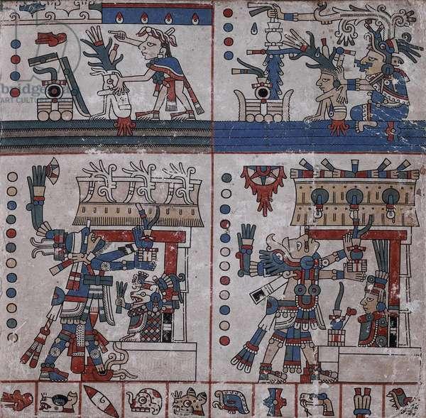 p.33 from the 'Codex Fejérváry-Mayer' (vellum)