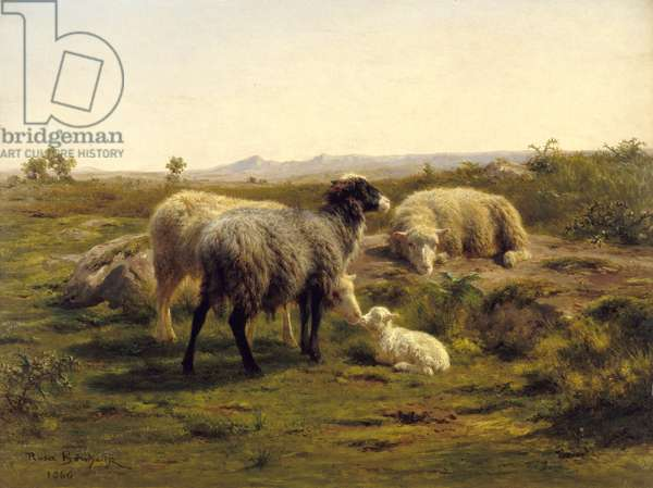 Sheep and lambs, 1866 (oil on canvas)