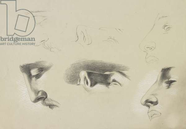 Six profile studies of a male head, c.1860s-90s (pencil with white heightening on paper)