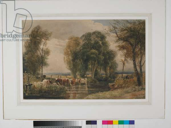 Landscape, cattle in stream, with sluice gate, c.1835 (w/c on paper)